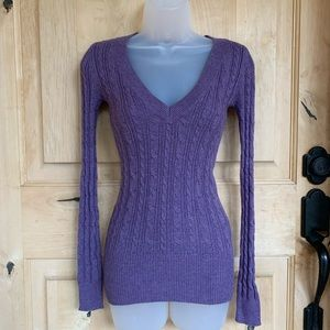 American Eagle Form Fitting, V-neck Sweater